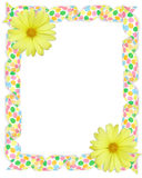 Yellow daisy border Easter Stock Image