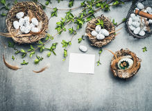Easter border with decoration, nest, eggs, spring twigs and blank greeting card Royalty Free Stock Images