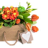 Easter border with orange flowers and spring decorations on whi Stock Photos