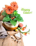 Easter border with orange herbera, freesias and spring decoratio. Ns, caption Happy Easter! on plain white background, space for your text Stock Photos
