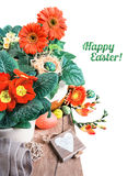 Easter border with orange herbera, freesias and spring decoratio Royalty Free Stock Photography