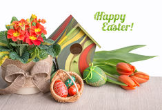 Easter border with orange tulips, primrose and decorations on wh Royalty Free Stock Images