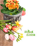 Easter border with spring flowers andeggs on wood and white back Royalty Free Stock Image