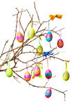 Easter branch Royalty Free Stock Image