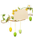 Easter Branches - with Easter Eggs, Blank Sign / Card, Isolated Stock Photos