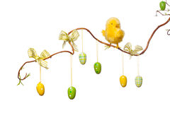 Easter Branches - with Easter Eggs, Ribbons and Chick Stock Image