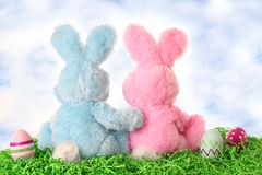 Easter bunnies. Easter bunny pair looking out at the sky