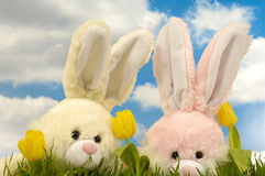 Easter Bunnies And Tulips Royalty Free Stock Images