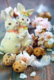 Easter bunnies and apricot flowering branches. Stock Photos