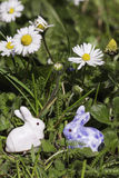 Easter bunnies beneath flowers. Easter bunnies beneath white and yellow flowers Stock Images