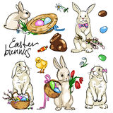 Easter Bunnies Collection Stock Photography