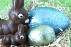 Easter bunnies and eggs Royalty Free Stock Images