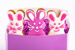 Easter bunnies. Gingerbread easter cookies in shape of bunny. White background Stock Photo
