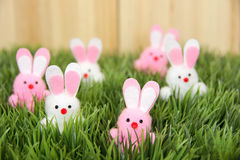 Easter bunnies in grass Stock Photo