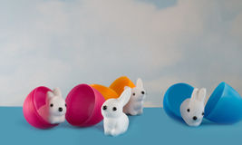 Easter bunnies hatching from eggs Stock Photos