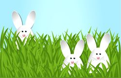Easter bunnies. Holiday background with Easter bunnies royalty free illustration
