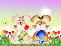 Easter bunnies. Illustration of Easter bunnies in the farm stock illustration