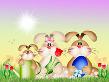 Easter bunnies. Illustration of Easter bunnies in spring vector illustration