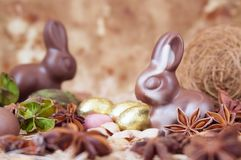 Chocolate Easter bunnies Royalty Free Stock Image