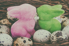 Easter bunnies and quail eggs Stock Images