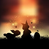 Easter bunnies at sunset. Silhouettes of Easter bunnies against a sunset sky Stock Image