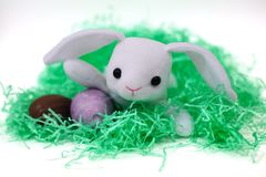 Free Easter Bunny 1 Royalty Free Stock Photography - 678847