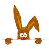 Easter bunny Stock Photos