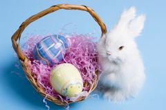 Free Easter Bunny Royalty Free Stock Image - 1946946