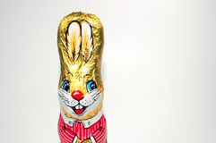 Easter Bunny. Cute Chocolate Easter Bunny with golden ears Royalty Free Stock Image