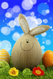 Easter Bunny. With Easter Eggs And Primroses On Green Grass With Bubbles In Background Royalty Free Stock Photos