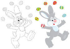 Easter Bunny. Grey rabbit juggling with colorfully painted Easter eggs, color and outline vector illustrations Royalty Free Stock Photography