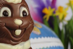 Easter bunny. Made of chocolate in front of daffodil flower and easter egg Royalty Free Stock Photos