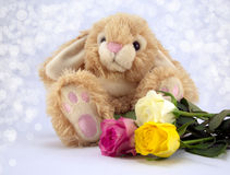 Easter Bunny. Fluffy Easter bunny with pastel coloured roses and diffused background Royalty Free Stock Photos