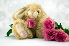 Easter Bunny. Fluffy Easter bunny with pastel pink roses and diffused background Royalty Free Stock Image