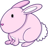 Easter Bunny. Rabbit Vector Illustration Stock Image