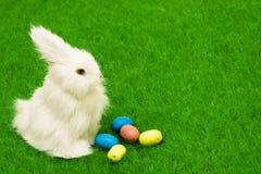 Easter Bunny Royalty Free Stock Photos
