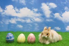 Free Easter Bunny Stock Images - 4715454