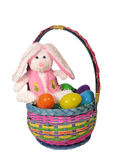 Easter Bunny. A photo of an Easter bunny in a basket Royalty Free Stock Photos