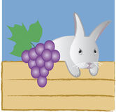 Easter Bunny. This is the illustration of Easter bunny with blue grape Stock Photography