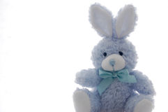 Easter bunny. Blue easter bunny on white background Royalty Free Stock Images