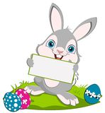 Easter Bunny and acard Stock Photo
