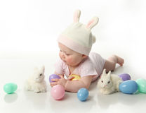 Easter bunny baby Stock Image