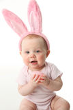 Easter bunny baby Stock Images