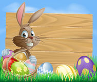 Easter Bunny Background Sign Royalty Free Stock Photo
