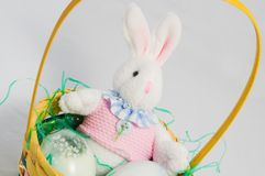 Easter Bunny in Basket Stock Images