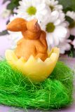 Easter bunny in a basket Royalty Free Stock Image