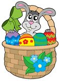Easter bunny in basket Stock Photography