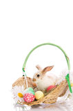 Easter Bunny in a basket with eggs Stock Photo