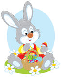 Easter Bunny with a basket of eggs Stock Image