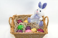 Easter bunny in basket of eggs Royalty Free Stock Photography